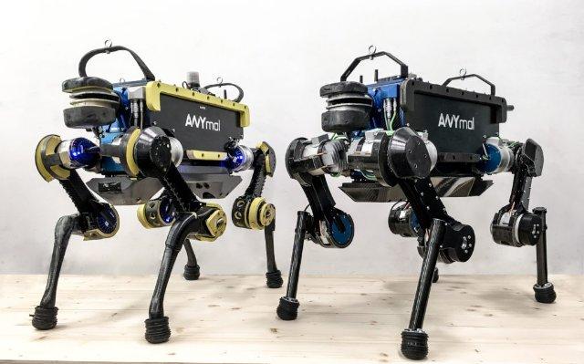 Роботизированный инспектор ANYmal от ANYbotics прошел испытания в канализационных тоннелях Цюриха