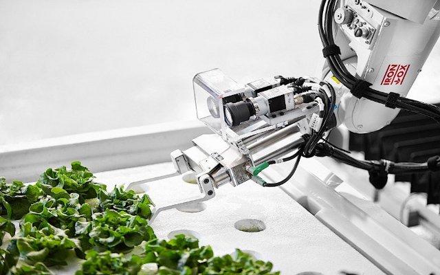Iron Ox – первая в мире автономная ферма по выращиванию зелени