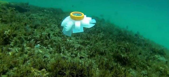 Робот-медуза для изучения морей создан во Флоридском Атлантическом университете