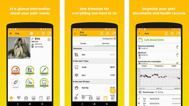 SMARTlife: 5 полезных приложений на Android для владельцев собак и кошек