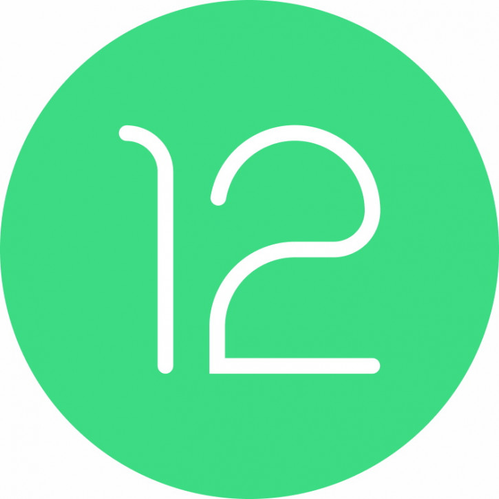 СРОЧНО! Android 12 Developer Preview уже доступна для Pixel [скачать]