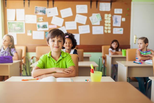 Преимущества и недостатки частного образования на сегодня