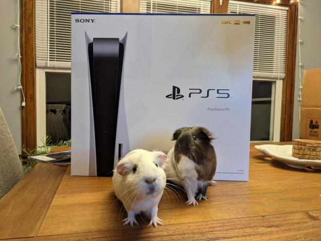 Sony запускает первую программу бета-тестирования PlayStation 5