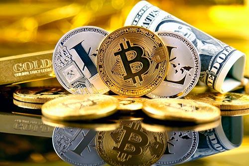 Лучшие платформы по изучению и  использованию криптовалюты