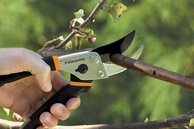 SMARTlife: Инструменты для сада. Что выбрать?